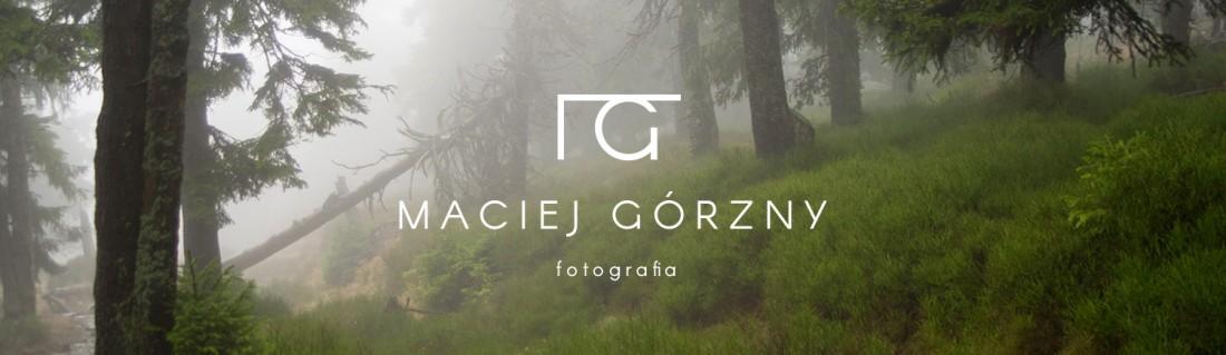 logo-background-photography