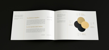 logo-guide-laguna-3