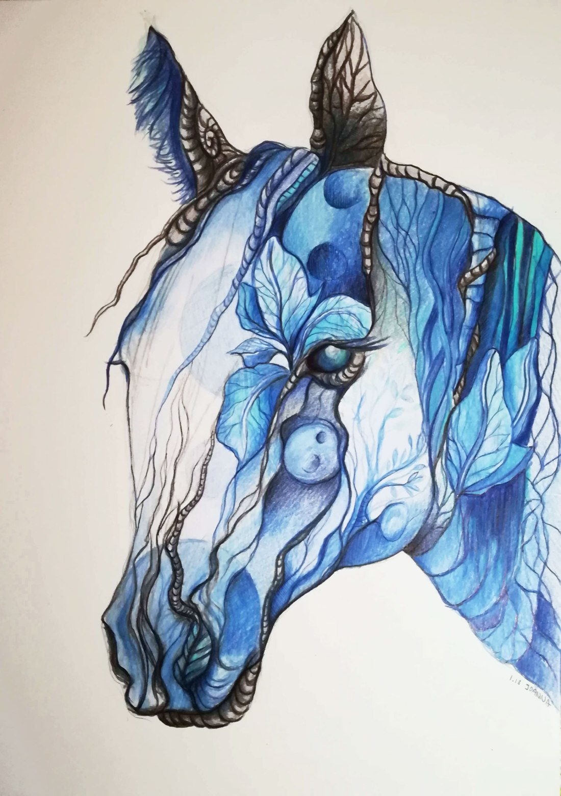 horse-joanna-pawlowska-prismacolor2